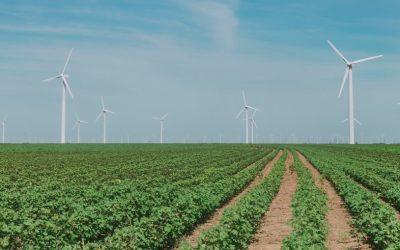 Foto veld met windmolens